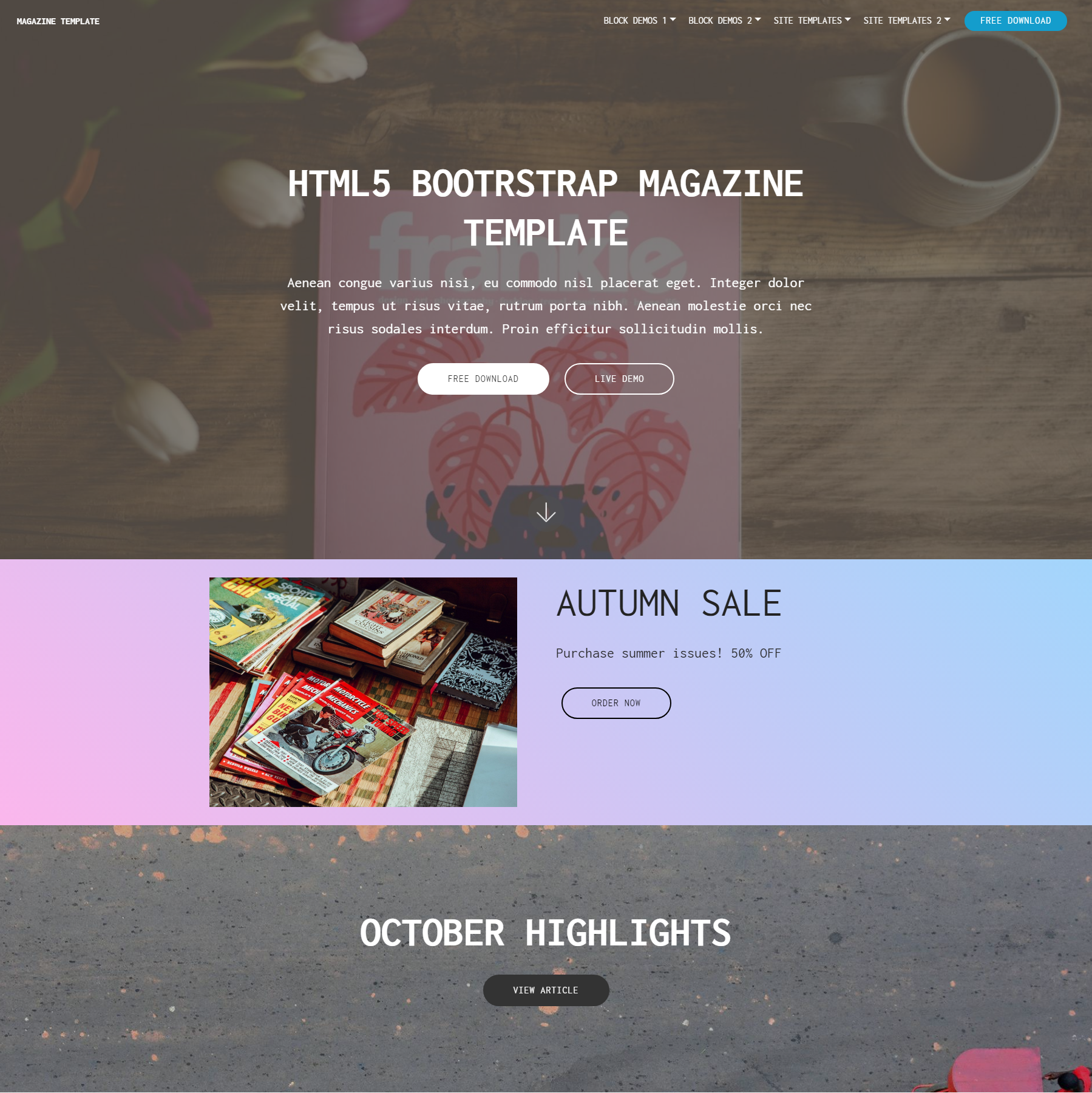 HTML5 Bootstrap Magazine Themes